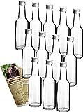 gouveo 12 Leere Glasflaschen Bordeaux 250 ml incl....