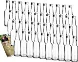 gouveo 42 Leere Glasflaschen Bordeaux 250 ml incl....