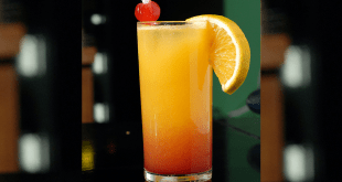 Tequila Sunrise Cocktail Rezept
